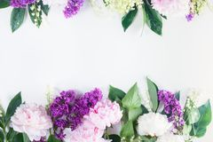 Frontières florales Photos stock
