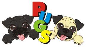 Fronti dei cuccioli con le lettere Immagine Stock