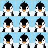 Fronti svegli di emozione del fumetto del pinguino Immagine Stock Libera da Diritti