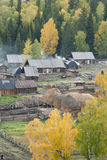 Frontier village. A small village just north of most of Xinjiang, China, is called the white buses, live tuwaren, Kazak and Mongolian people Royalty Free Stock Photos