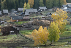 Frontier village. A small village just north of most of Xinjiang, China, is called the white buses, live tuwaren, Kazak and Mongolian people Royalty Free Stock Photography