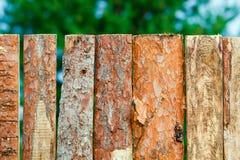 Frontière de sécurité des panneaux approximatifs de pin Image libre de droits