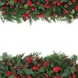 Frontière florale d'hiver Photographie stock