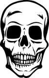 frontowa czaszka Obrazy Royalty Free