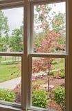 frontowego widok okno jard Obraz Royalty Free