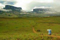 frontowy przewdonika góry roraima zdjęcia royalty free