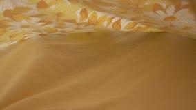 Frontowy widok kobiety ` s ręka podnosi łóżkowe pokrywy i znajduje kota zbiory