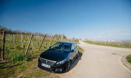 Frontowy widok nowy Peugeot 306 samochód parkował wiejską drogę obrazy stock
