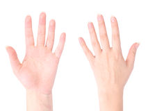 Frontseite und Rückseite der Hand Lizenzfreies Stockbild