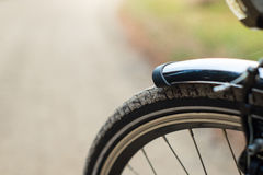Frontside av cykeln i skogen, DOF Fotografering för Bildbyråer