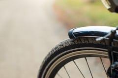 Frontside des Fahrrades im Wald, DOF Stockbild