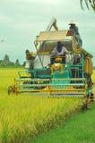 Frontview av riceplockningmaskinen Royaltyfri Foto