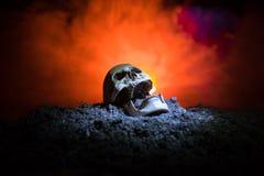 frontview ludzkiej czaszki otwarty usta na zmroku tonował mgłowego tło Horroru pojęcie zdjęcia royalty free