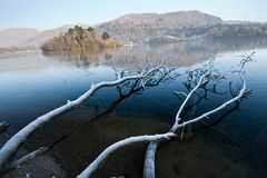 Fronzen kaswick lake and fallen tree royalty free stock images