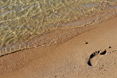 Frootprint en la arena Imagen de archivo libre de regalías