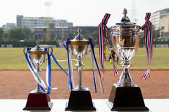 Frophy cup Royalty Free Stock Images