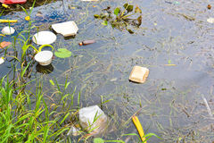 Förorenat vatten Arkivbilder