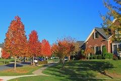 Förort Autumn Residential Area Royaltyfri Bild