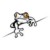 Frosch Lizenzfreies Stockfoto