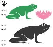 Frosch Lizenzfreie Stockbilder