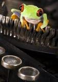 Frosch auf der Schreibmaschine Lizenzfreies Stockbild