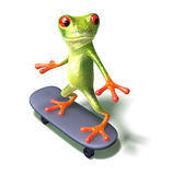 Frosch auf einem Skateboard Lizenzfreie Stockfotos