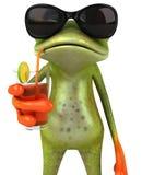 Frosch an den Feiertagen Lizenzfreies Stockbild