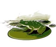Frosch, der auf Blatt sitzt lizenzfreie abbildung