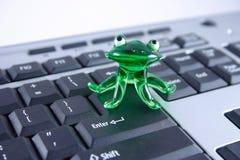 Frosch des grünen Glases auf der Tastatur lizenzfreie stockfotografie