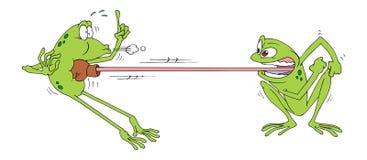 Frosch Fighting Lizenzfreie Stockfotos