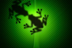 Frosch-Liebes-Kuss Stockbild