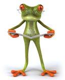 Frosch mit einer Zeitung Lizenzfreies Stockfoto