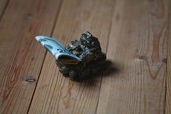 Frosch mit Geld Lizenzfreies Stockbild