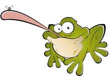 Frosch mit Programmfehler auf Zunge Lizenzfreies Stockfoto