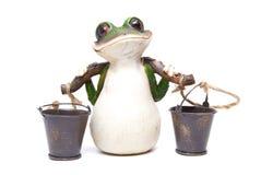 Frosch mit Wannen Lizenzfreie Stockfotografie