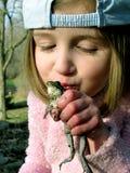 Frosch-Prinz Lizenzfreie Stockbilder