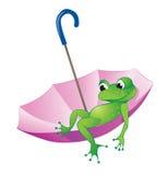 Frosch und Regenschirm Lizenzfreie Stockfotografie