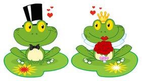 Froschbraut und -bräutigam auf Lilienauflagen Stockfotos
