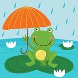 Froschfell vom Regen unter Regenschirm