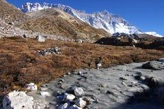 Frosen mountain river Stock Images