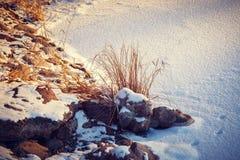 Frosen shore of lake Stock Photos