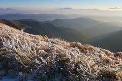 Frost в горах Стоковые Изображения