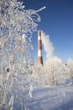 Frost на деревьях и боилер трубы с уходя дымом Стоковое Изображение RF
