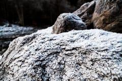 Frost на расти на утесах Стоковые Фотографии RF