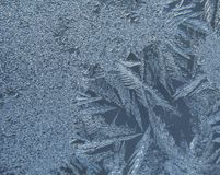 Frost на специализированной части окна стоковые фотографии rf