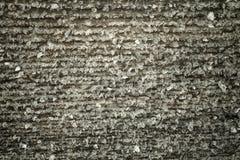 Frost на старой деревянной поверхности Роса и замерзать утра зимы тонизировано стоковое изображение rf