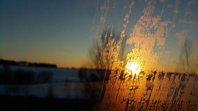 Frost на стекле Стоковое Фото