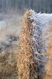 Frost покрыл связку соломы Стоковая Фотография RF