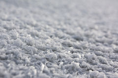 frost Arkivfoto