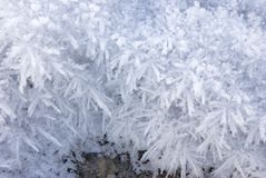 Frost. Greater crystals of an ice. Long needles under the bright sun Royalty Free Stock Photo
